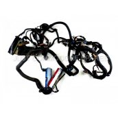 WH Statesman/Caprice Wire Harness 06/99-04/03 *MAIN BODY HARNESS CAPRICE TYPE